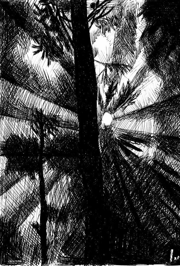 Bosco illuminato dalla luna, la psiche splendido inedito disegno di Belansky