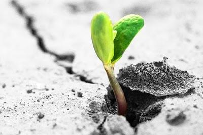 Che cosa genera la speranza? Possiamo far crescere questo nostro stato mentale?
