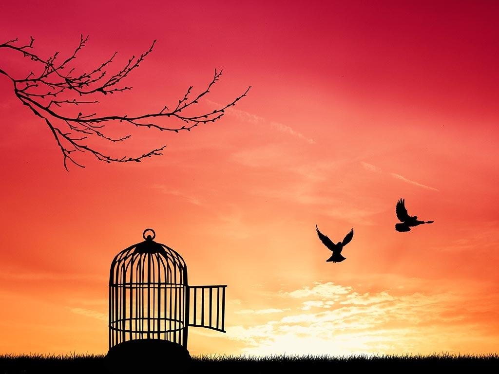 Il concetto di libertà in alcune delle sue accezioni, il mutato atteggiarsi nel tempo